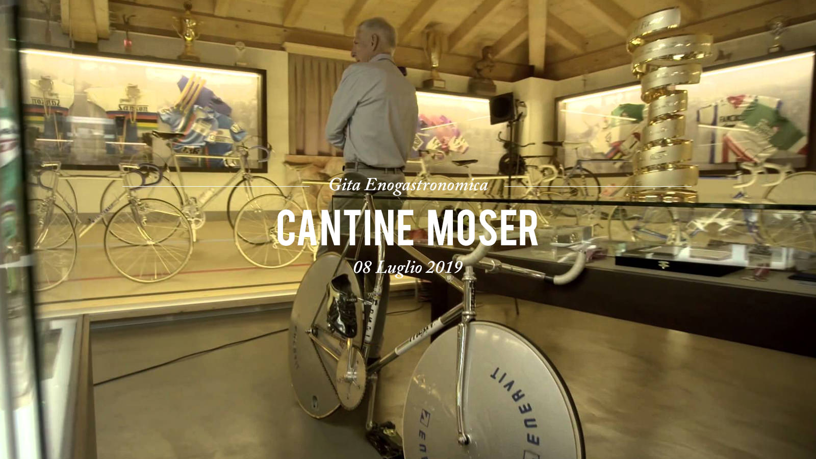 Cantine Moser 2019